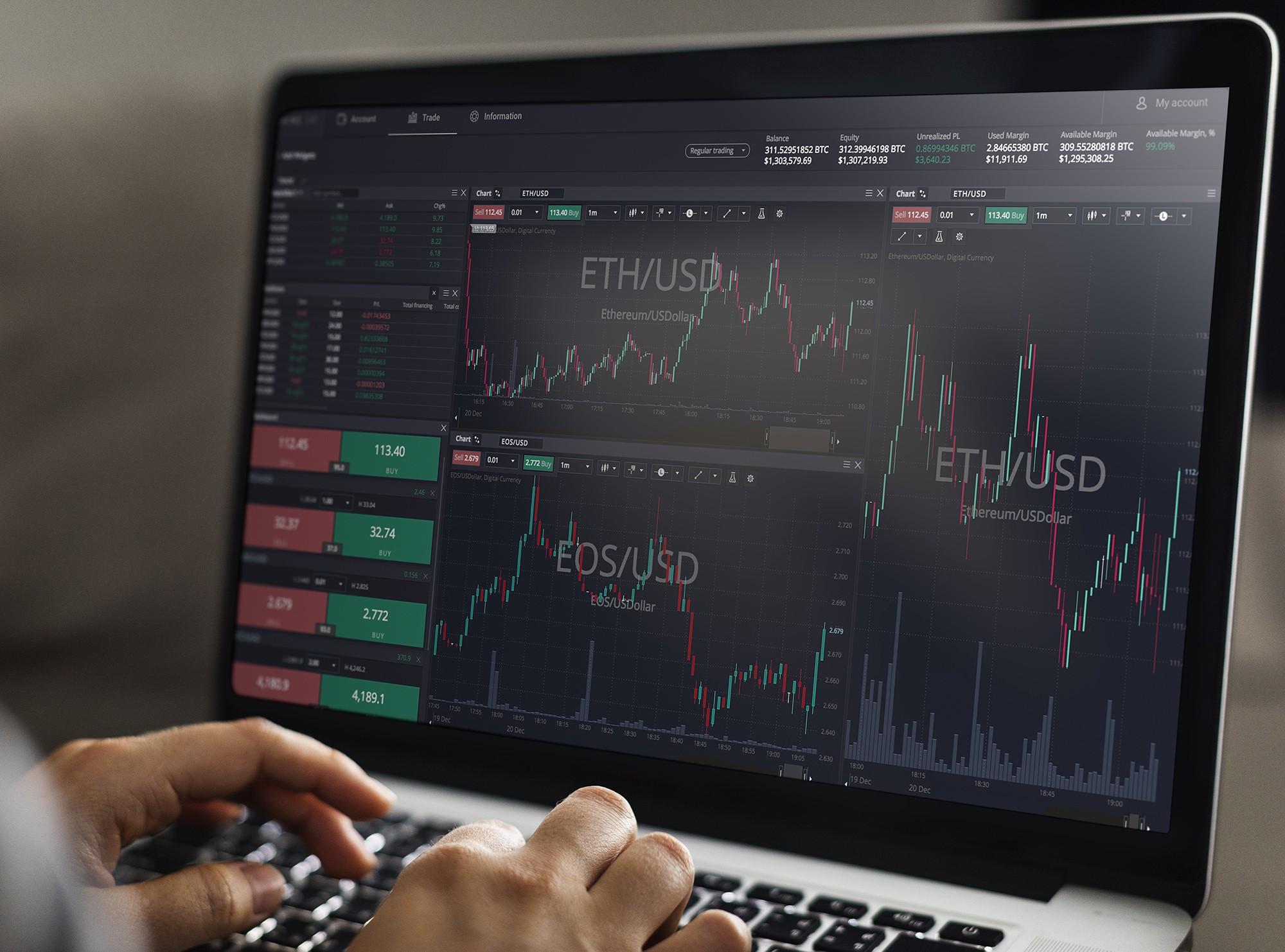 BitCoin Long-Term Investors Good?