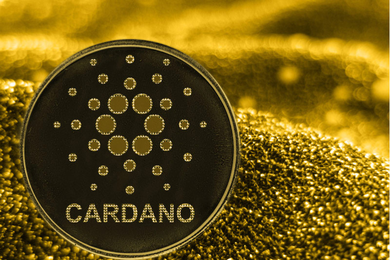 Cardano Climbs 10%